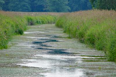 Wasser- und Bodenverband Uelzen - Gewässer- und Landschaftspflege