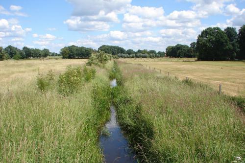 Wasser- und Bodenverband Uelzen - Projekt Gewässerallianz Niedersachsen - Stederau
